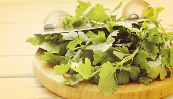 17 Plantas Comestibles Y Medicinales Que Seguro No Conocías!