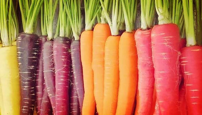 Zanahoria Usos : Tortitas de calabacín y zanahorias, facilísimo, una receta ideal para introducir las verduras, para quien les cuesta más comerlas.